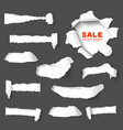 Big collection of torn paper vector image