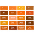 Orange Tone Color Shade Background with Code vector image vector image