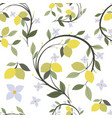 pattern lemon branch tree with flowers and vector image