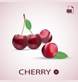 set of ripe red cherries four berries with a vector image