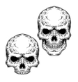 Set of two skulls