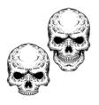 set two skulls vector image vector image