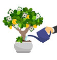 businessman hand waterng money tree vector image vector image