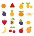 cartoon fruits cartoon fruits vector image