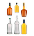 cognac whiskey and brandy bottle vector image vector image