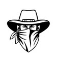 cowboy bandit outlaw highwayman or bank robber vector image