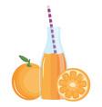 fresh orange juice fruit in botttle with straw vector image vector image