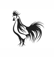 rooster silhouette vector image vector image