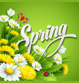 Fresh spring background with dandelions and vector image