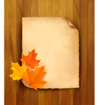 autumn leaves paper vector image