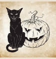 black cat sitting with halloween pumpkin over old vector image vector image