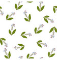 comfrey seamless pattern vector image vector image