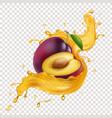 plum juice yellow splash realistic 3d vector image