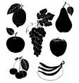 set of silhouettes of fruit vector image vector image