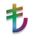 turkiey lira sign colorful icon with vector image