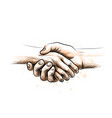 human hands are joined a handshake in a gesture vector image vector image