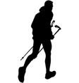 male runner with trekking poles vector image vector image