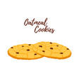 oatmeal cookie oat breakfasttasty biscuit vector image vector image