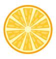 orange flat icon fruit and vitamin vector image vector image