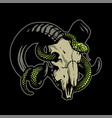 ram skull with a curly snake on a dark background vector image