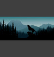 silhouette wolf on hill in the night vector image