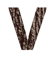 bark letter V vector image vector image