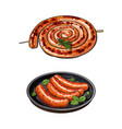 freshly grilled barbequed sausages long and short vector image vector image