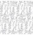 hand drawn herbal sketch seamless pattern vector image vector image