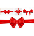 red ribbon bow as decorations vector image