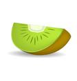 bio piece of kiwi mockup realistic style vector image vector image