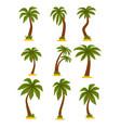 flat set cartoon tropical palms high vector image
