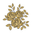 golden rose flowers and leaves on white vector image vector image