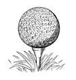 hand drawing of golf ball on tee vector image