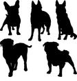 set silhouettes pug french bulldog shepherd vector image