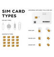 sim cards mobile phone call network connection vector image