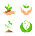 sprout flat organic nature seeds icons set vector image vector image