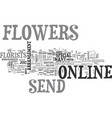 why not send flowers online text word cloud vector image vector image