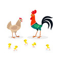 brown chicken family isolated on white background vector image