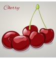Cartoon sweet cherries isolated on grey background