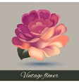 Flower element isolated vector image vector image
