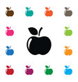 isolated apple icon jonagold element can vector image vector image