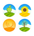 logotypes with apple sunflower and wheat vector image