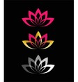 Lotus Flower design vector image