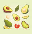 set realistic fresh avocado fruit slice and whole vector image