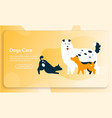 banner dogs care concept cute puppies vector image