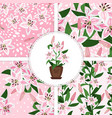pink lily icon and patterns collection vector image