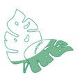 plant ecology symbol vector image