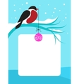 red chect bird on branch with snow vector image