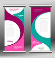 roll up banner template vector image vector image