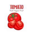 tomato sliced vector image vector image